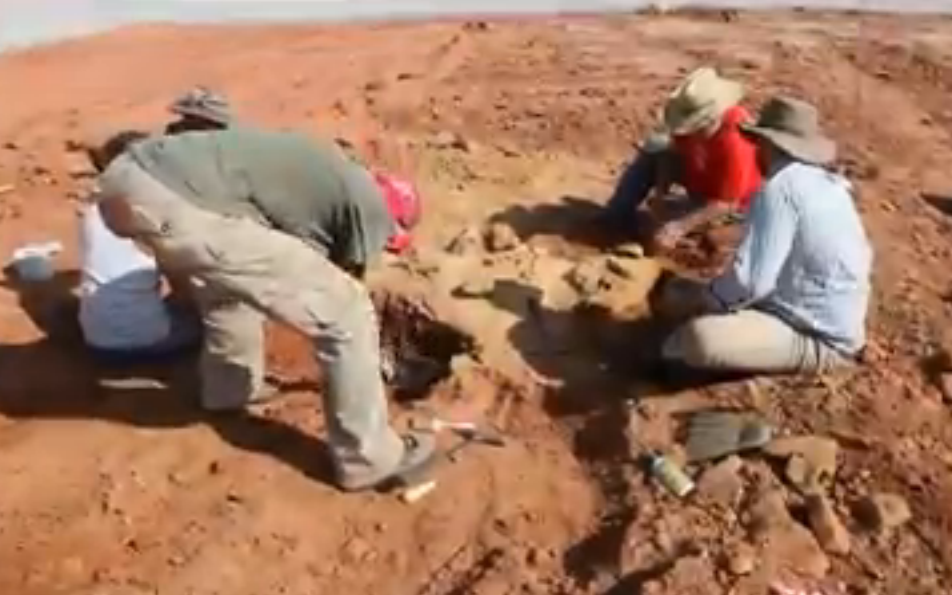 Paleontologists excavating the site of fossil camel and horse remains in Packsaddle Wildlife Management Area (NewsOK)