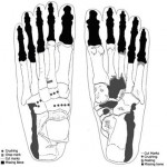 sacred ridge foot bones