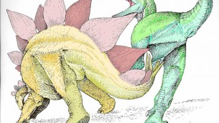"An artist's rendering depicts a defensive strike from a stegosaur that paleontologists believe caused the fatal injury. ""Fossil's of contemporaneous stegosaurs appear to have had unusually flexible and agile tails,"" Dr. Bakker said. (Courtesy Robert Bakker)"