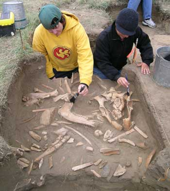 Fincastle bison kill site excavation