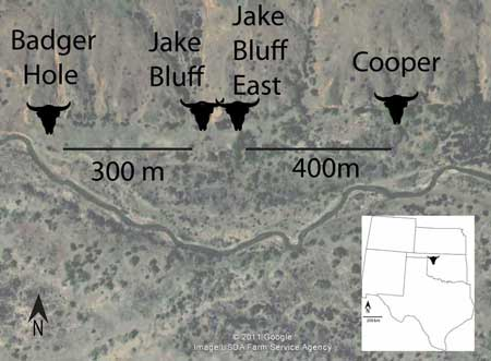jake-bluff-east-map