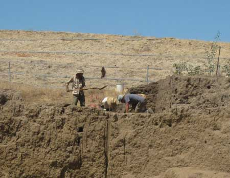 california-archaeological-dig