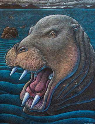 desmostylian-in-Alaska-with-teeth