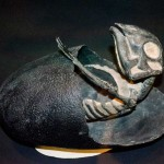 maiasaura-dinosaur-embryo-egg-featured