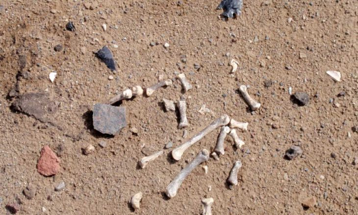 800-Year-Old Camp Found in Oregon Sand Dunes Poses Migration