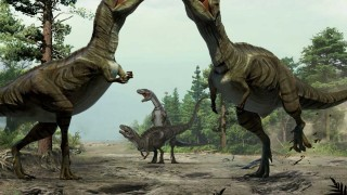 dinosaur-mating-behavior-featured