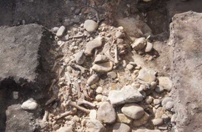 outlet store 60587 6d116 Unexpected' 3,000-Year-Old Bison Hunting Site Discovered in ...
