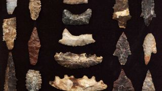 Channel Islands Paleocoastal-artifacts-featured