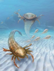 An artist's rendering depicts two Pentecopterus, the oldest sea scorpion ever found, and the largest such animal of its age. (Courtesy Patrick Lynch, Yale University)